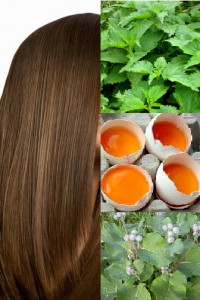 укреплении волос в домашних условиях