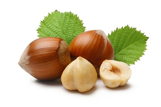 Орех фундук польза и вред для организма