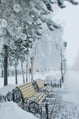 Сказочная зима.