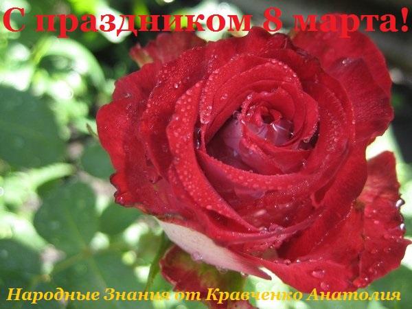 Народные знания от Кравченко Анатолий