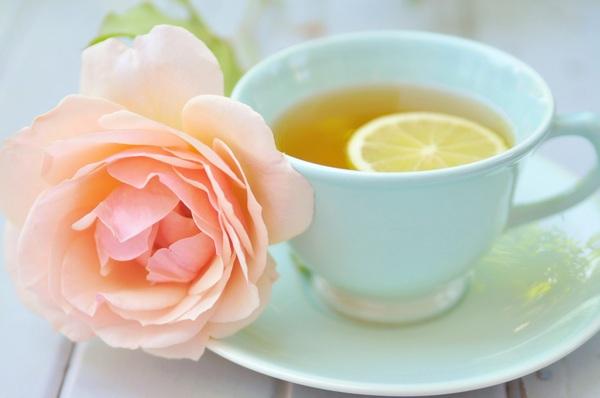 зелёный чай польза и вред для похудения