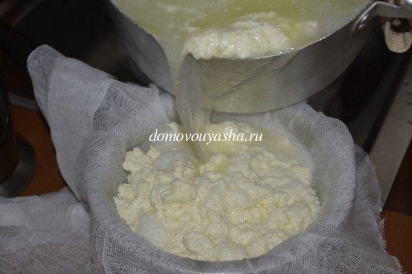 как приготовить брынзу молока
