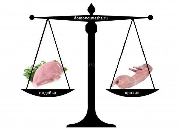 мясо индейки польза +и вред