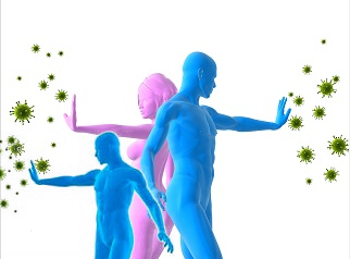 травы для укрепления иммунитета