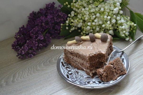 польский шоколадный бисквит