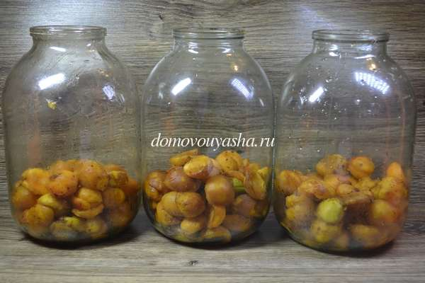 Компот из абрикос без косточек на зиму