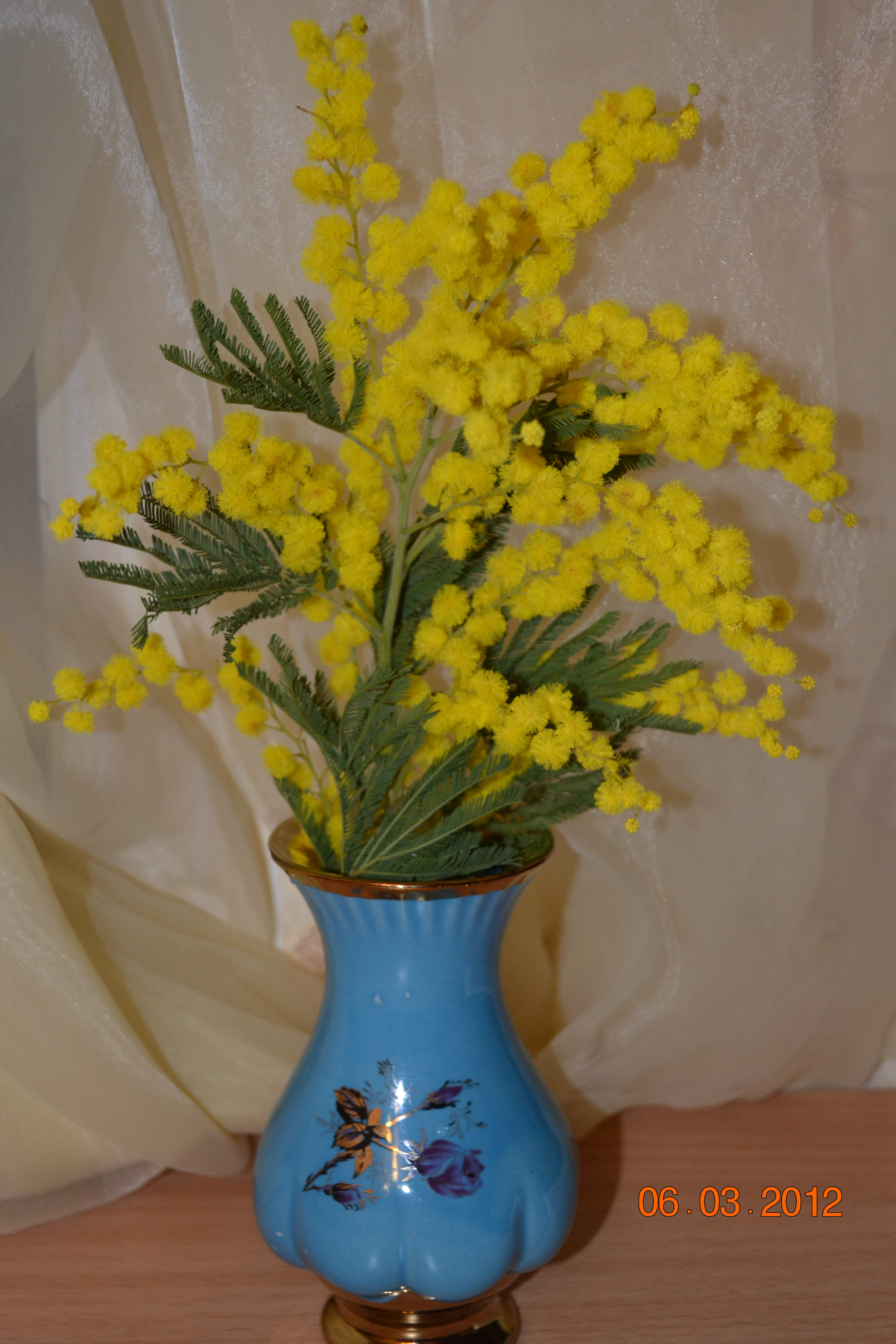 цветы к празднику 8 марта
