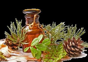 Пихтовое масло применение