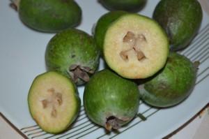 Фейхоа фрукт полезные свойства