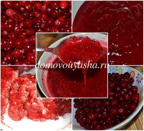ягода клюква полезные свойства и противопоказания