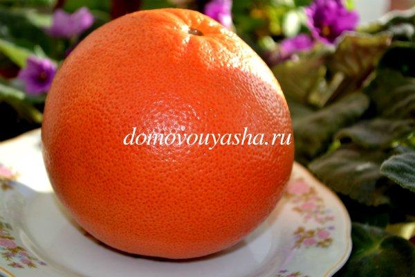 грейпфрут полезные свойства и противопоказания