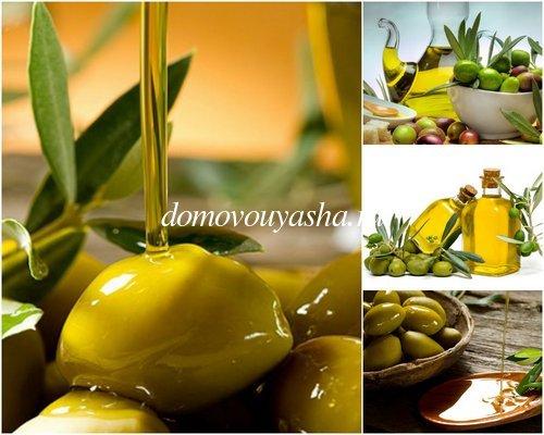 оливковое масло лечебные свойства и применение