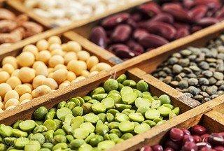 белки животные и растительные