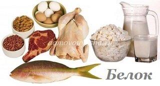 продукты содержащие больше всего белка