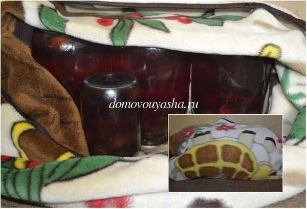 Компот из слив на зиму пошаговый рецепт с фото