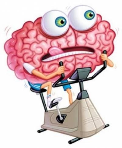 Как улучшить работу головного мозга