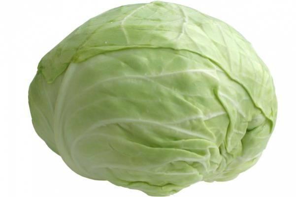Белокочанная капуста – состав и польза
