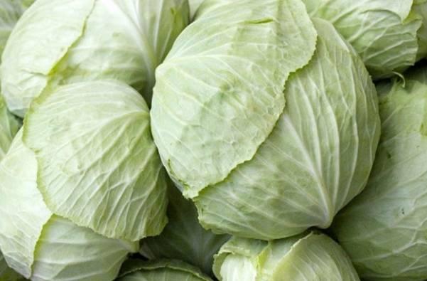Как правильно выбрать капусту