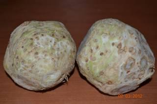 Полезные свойства сельдерея для здоровья
