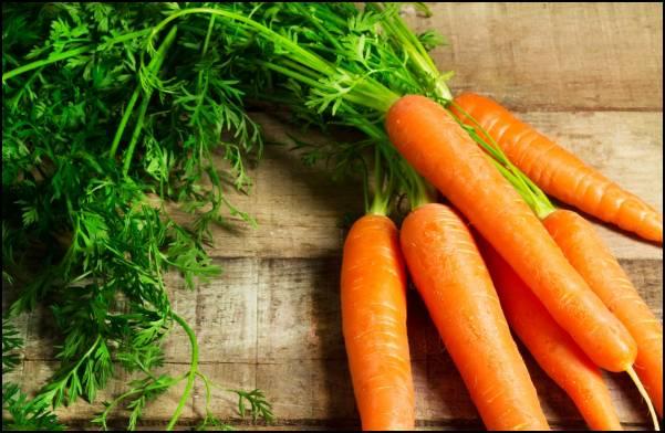 Сушёная ботва моркови полезные свойства