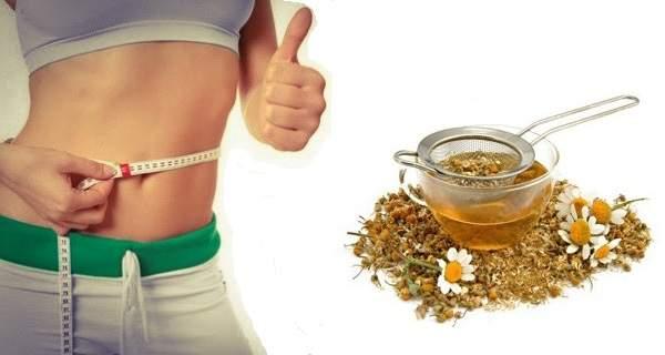 Чай из ромашки свойства