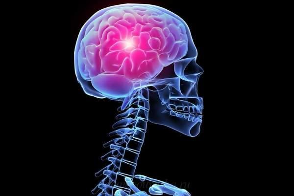 Что такое шишковидная железа