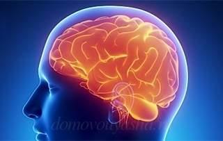 Препараты улучшающие память и работу мозга