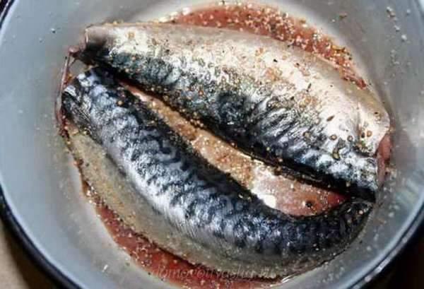 Засолить скумбрию вкусно и быстро рецепты