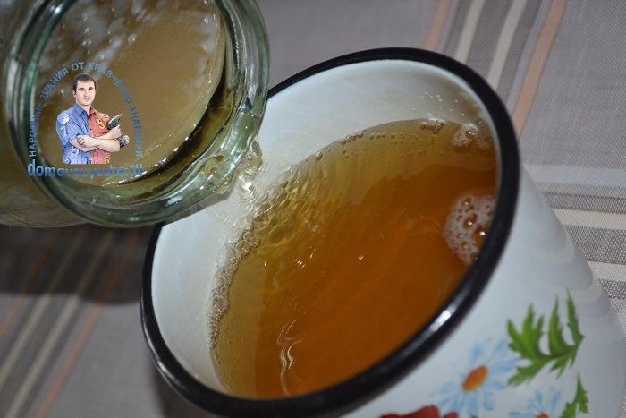 Комбуча(чайный гриб) состав