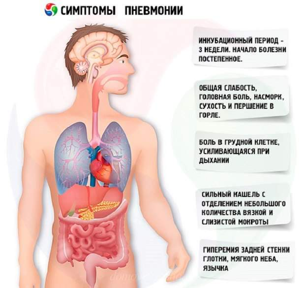 Пневмония легких симптомы и признаки