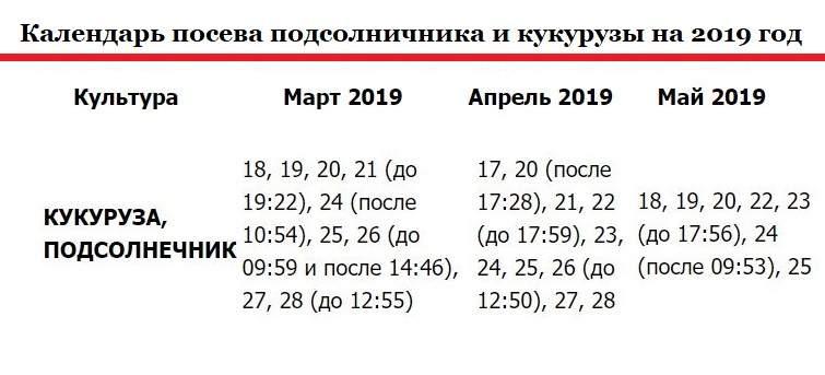 Календарь посева подсолнечника 2019 год