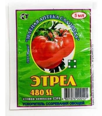 Чем подкормить томаты во время плодоношения