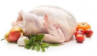 Мясо индейки польза и вред для организма