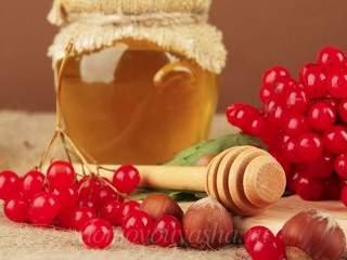 Калина с медом на зиму без варки