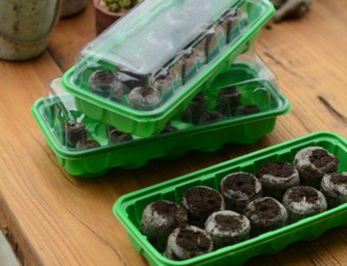 Как правильно вырастить рассаду перца в домашних условиях