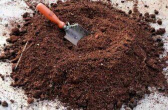 Лучшие удобрения перед посадкой картофеля весной