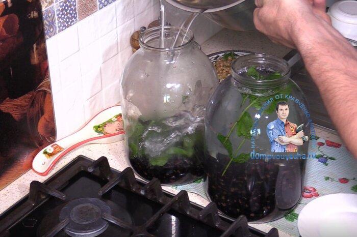 Компот из черной смородины с мятой на зиму